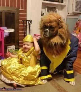 disfraz de bella y bestia para perros