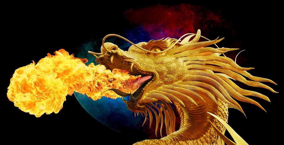imagen principal de dragones