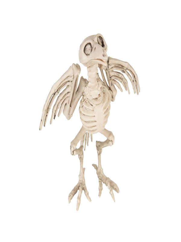 cuervo esqueleto de 20 cm