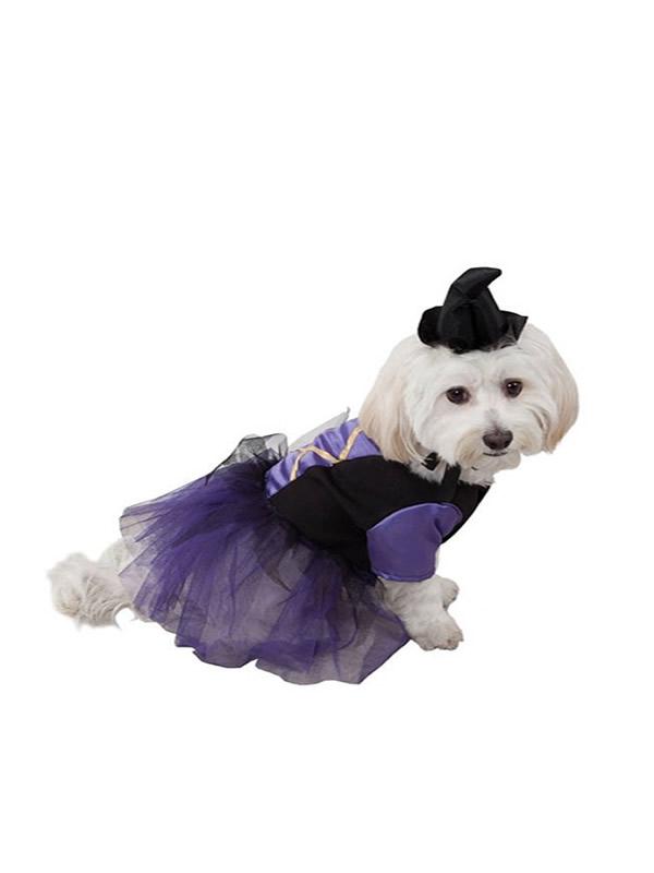 disfraz de bruja para perro