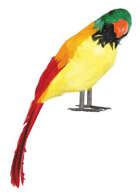 loro con plumas rojas reales de corcho 40 cm