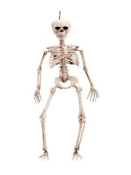 esqueleto colgante 90 cm