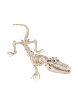 esqueleto de cocodrilo 16x50 cm