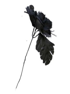 flor negra para halloween