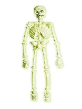 colgante de esqueleto laboratorio 3d fosforescente