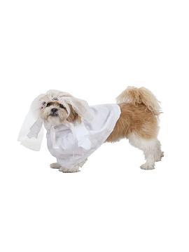 disfraz de novia para perro
