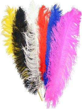 pluma naturales de 50 cm varios colores
